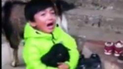 El emotivo vídeo de un niño que salva a una cabra de un sacrificio