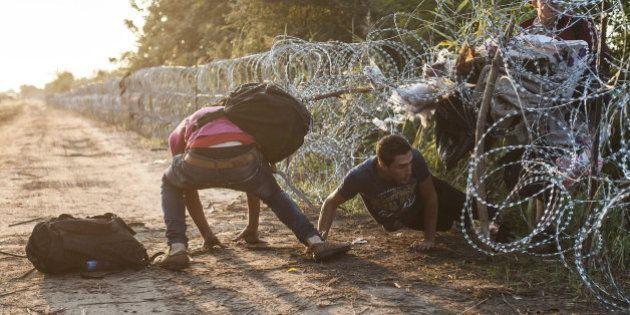 Hungría concluye el tendido de la valla alambrada en su frontera con