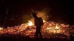 Un incendio arrasa 2.000 hectáreas en