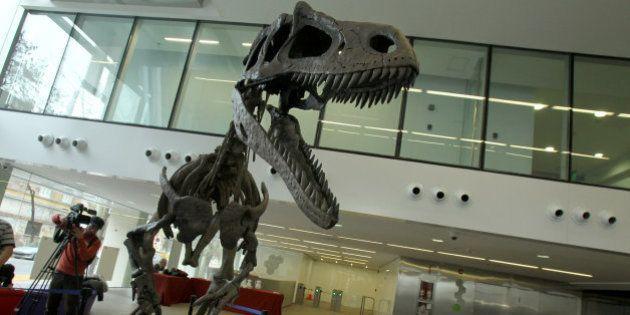 Gualicho, el dinosaurio carnívoro de Patagonia con los mismos brazos que el T.