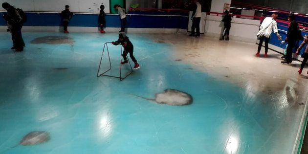 Cierran esta pista de patinaje en Japón en la que había 5.000 peces muertos bajo el