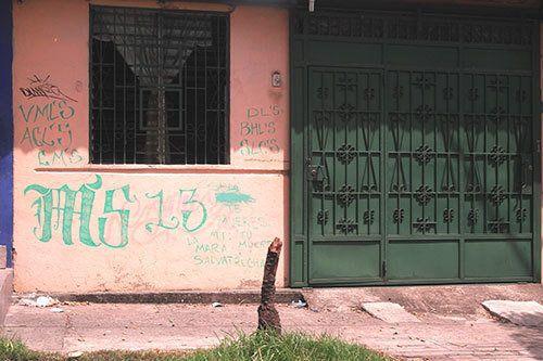 La Guerra de El Salvador (II): las paredes