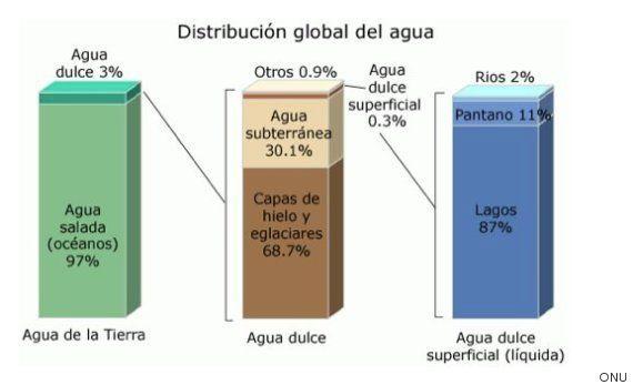 Fácil, ecológico y económico: la importancia de ahorrar agua (incluso en