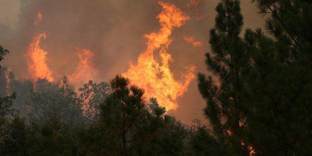 San Francisco, en estado de emergencia por un incendio en el parque de