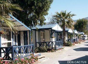 Campings, colonias y actividades para que la crisis no les robe el verano a los