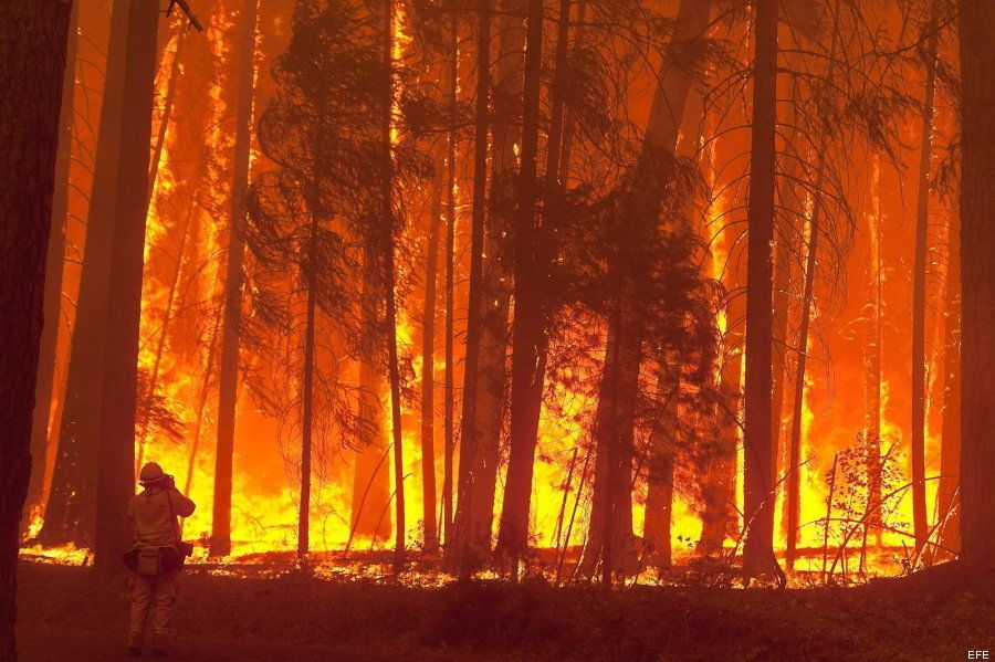 11 imágenes impactantes del incendio que arrasa el Parque Nacional de Yosemite
