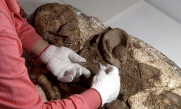 Descubren en Taiwán un fósil de 4800 años de una madre acunando a su