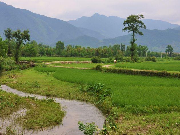 Anhui: ¿La última frontera de