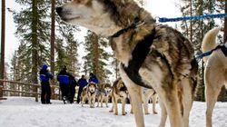 El viaje a Finlandia de Bárcenas, Sepúlveda y