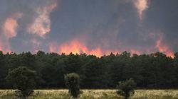 El incendio en Castrocontrigo, León, ya ha arrasado más de 8.000