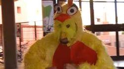 UPyD se disfraza de gallina: la idea más loca de la formación