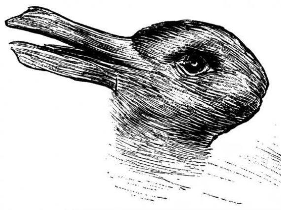 Résultat de recherche d'images pour 'hypnotique gif lapin ou canard'