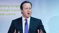 Cameron pide no ignorar las aspiraciones de