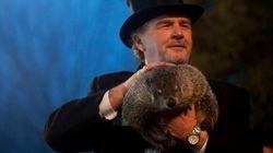 El día de la marmota... y este es el pronóstico de la marmota