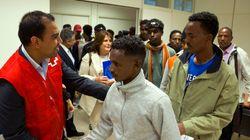 ¿Refugiados en España? ¡Rápido, una