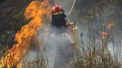 Un incendio fuera de control en Mallorca obliga a desalojar un pueblo