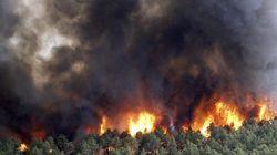 El viento complica un incendio en Robledo de Chavela