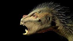 El dinosaurio enano que nos llegaría al