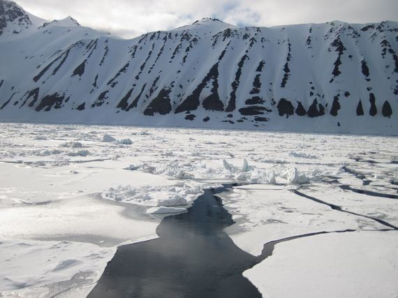 Atrapado en el tiempo: La extensión del hielo en el Océano Ártico alcanza un nuevo