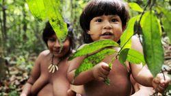 Ésta es la tribu más amenazada del planeta (VÍDEO,