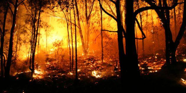 Lo que el fuego se llevó: estas son las consecuencias de un