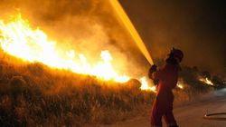 Bauzá espera que el incendio de Mallorca se controle
