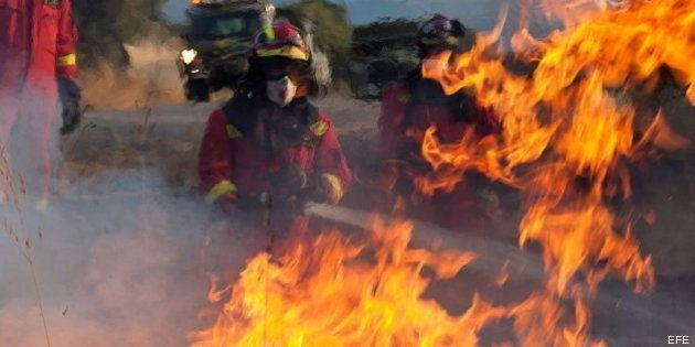 Detenido el presunto autor del incendio de la sierra de Tramontana, en Mallorca, ya