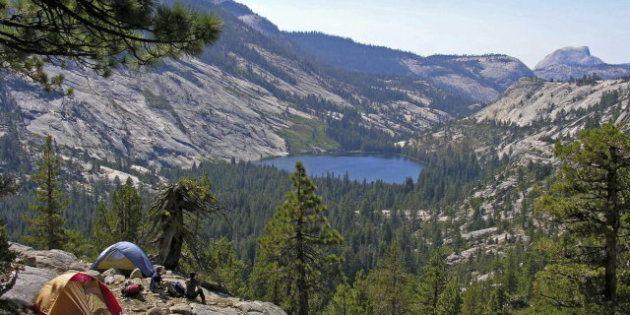 El Parque Nacional de Yosemite, en alerta por un virus mortal provocado por