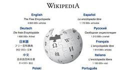 ¿Alguna vez has buscado esto en Wikipedia? Seguro que