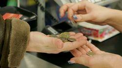 Tiendas que no repercutirán la subida del IVA sobre el consumidor: ¿generosidad o