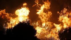Incendio en Málaga: un muerto y miles de hectáreas calcinadas