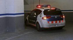 En libertad los 12 detenidos en la trama de