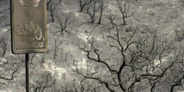 El fuego arrasa 153.159,66 hectáreas en lo que va de año, el triple que en el mismo periodo de 2011