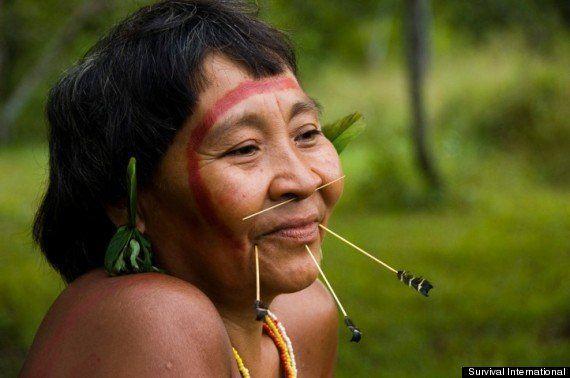Podemos salvar a los indígenas