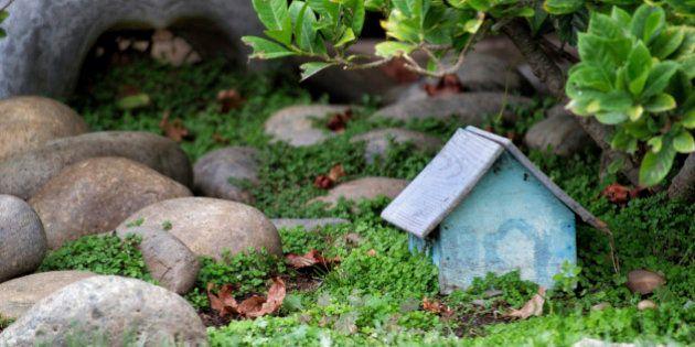 Claves para tener un jardín de