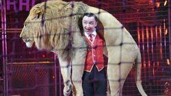 Málaga prohibirá los circos con animales y las atracciones de