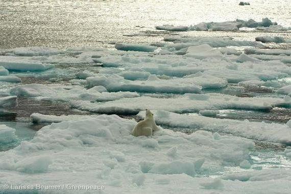 Volvemos a navegar por el Ártico para pedir su
