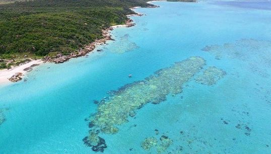 La Gran Barrera de Coral hace una llamada de atención a los océanos del