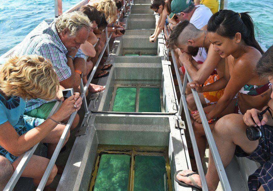 La decoloración de la Gran Barrera de Coral: una llamada de atención para todos los océanos del