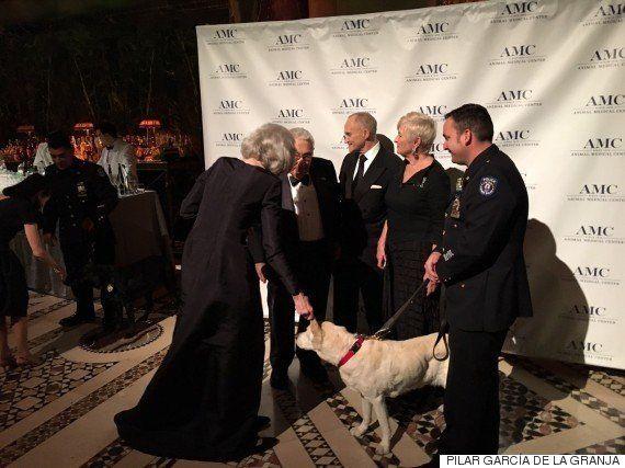 Una noche cinco estrellas para homenajear a los K-9, los perros policía de Nueva