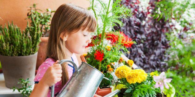 Ideas para conseguir el jardín soñado por cualquier