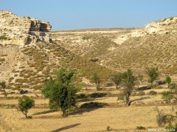 Un cementerio de elefantes junto al 'spa' del pleistoceno en Granada