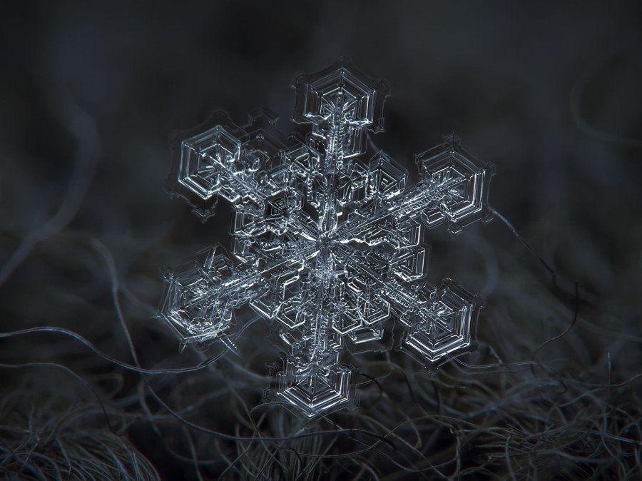 Las increíbles imágenes de copos de nieve de Alexey Kljatov