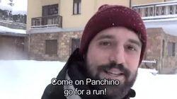 ¿Por qué los chihuahuas no corren en la nieve? El vídeo viral de Nic y