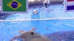 Brasil ya tiene la sustituta del pulpo Paul