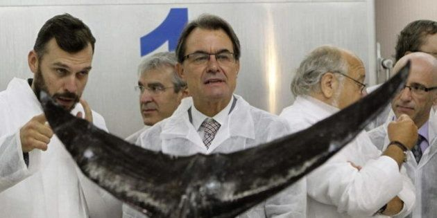 Artur Mas asegura que buscará apoyos en el Parlament si Rajoy rechaza la