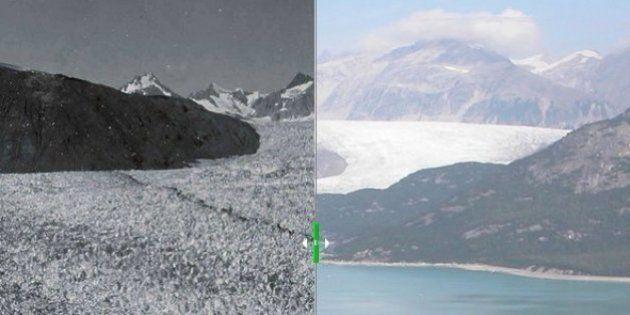 Incendios, sequía y calor: así ha cambiado la Tierra en los últimos años