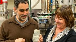 Encuentran en Groenlandia el fósil más antiguo conocido hasta