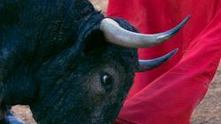 Los toros en TVE generan polémica en