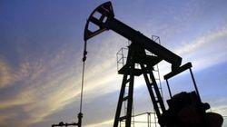 Caída del precio del petróleo: